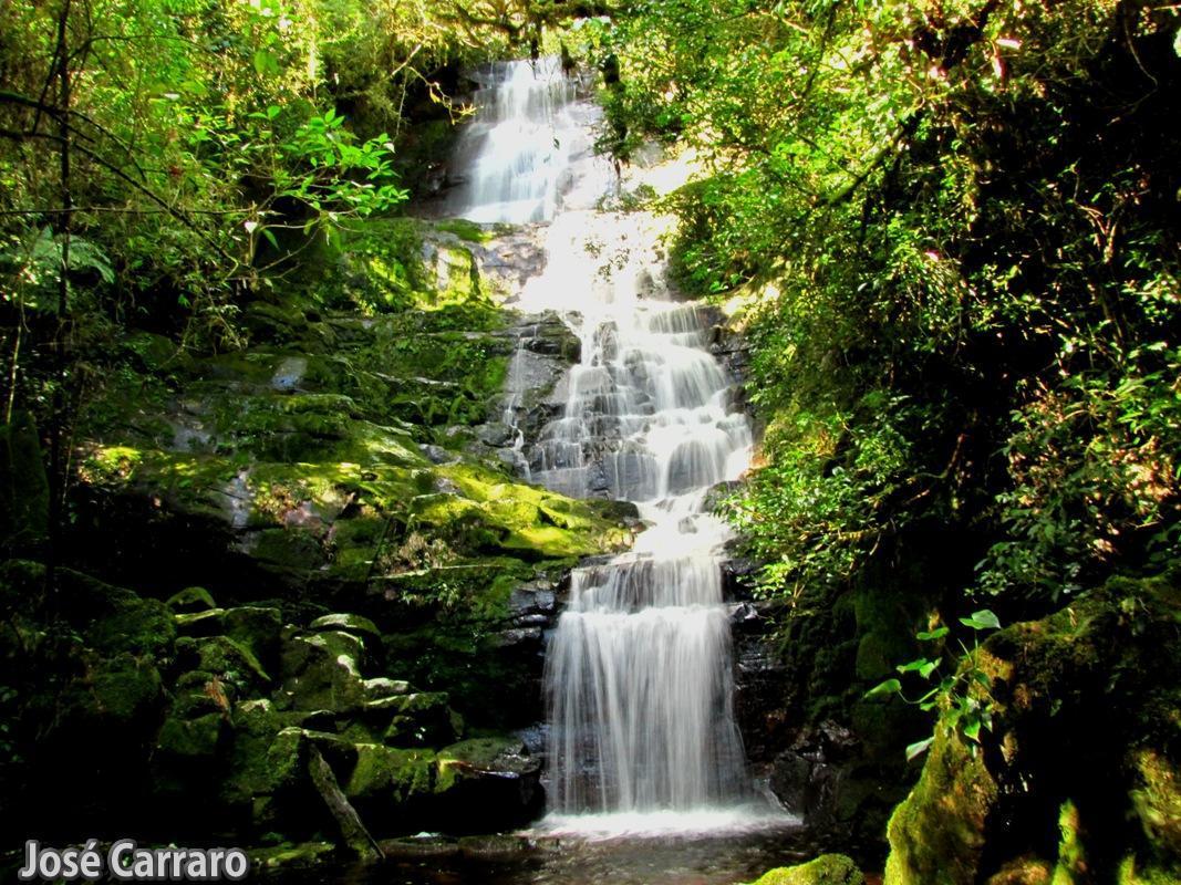 ['Cachoeira no Ribeirão Ipiranga]