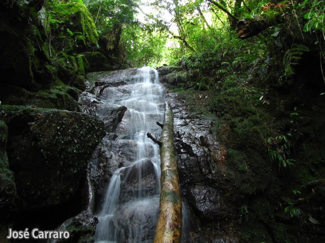 ['Cachoeira no Rio do Mico]